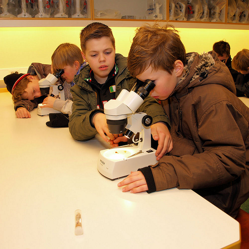 Kids looking into microscopes and doing science