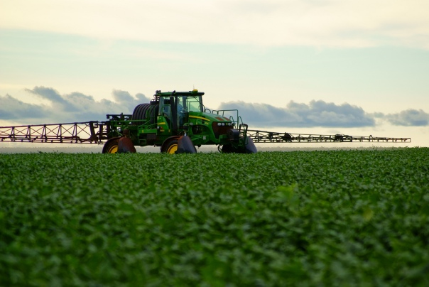 A common Iowa sight: a rig spreading herbicide on glyphosate-tolerant soybeans.